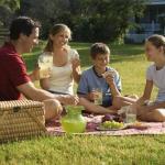 Как организовать здоровый пикник