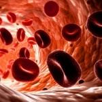 Что делать, если у вас низкий гемоглобин