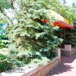 Санаторий «Азов», Бердянск: лучший вариант семейного отдыха