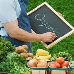 Фактор здоровья: органическая продукция в Украине становится популярней