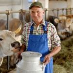 Нет - антибиотикам для скота: американские новации