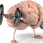 Наш головной мозг нуждается в ежедневном внимании