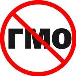 Как влияет ГМО на здоровье человека
