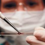 Памятка пациенту: как правильно сдавать анализы крови