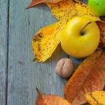 Каким продуктам питания отдать предпочтение осенью