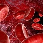 Анемия - профилактика, диагностика, лечение