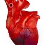 Ассоциация кардиологов: в Украине невозможно помочь больным с инфарктом миокарда