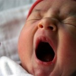 Зевота защищает организм от перегрева