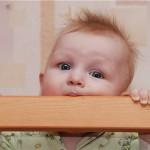 Когда у ребенка лезут зубки...
