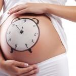 Как рассчитать зачатие девочки