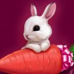 Каким будет 2012 год Черного Водяного Дракона для Кролика