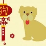 Каким будет 2012 год Черного Водяного Дракона для Собаки
