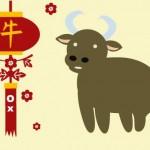 Каким будет 2012 год Черного Водяного Дракона для Быка
