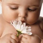 Как делать первые фото малыша