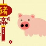 Каким будет 2012 год Черного Водяного Дракона для Свиньи