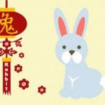 Кролик (Кот) - характеристика знака
