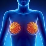 Как не допустить жировой некроз молочной железы