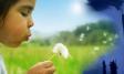 Значение чистой экологии для здоровья человека