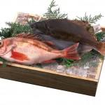 Что полезнее: мясо или рыба