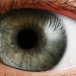 Самые распространенные болезни глаз