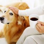 Кофе помогает отсрочить наступление болезни Альцгеймера