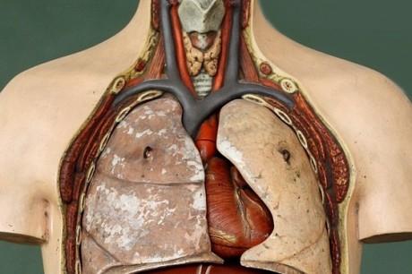 Что нужно знать при лечении туберкулеза