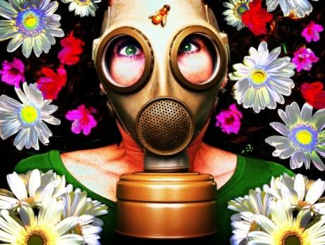 Аллергия на пыльцу растений