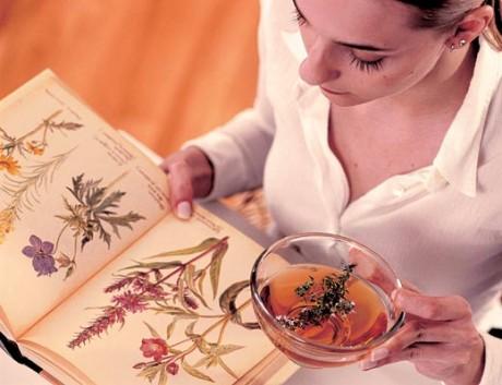 Как очистить организм травами