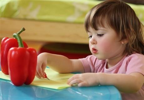 Личные качества ребенка-сангвиника