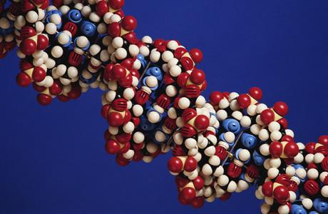 Самые частые генетические заболевания