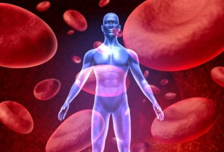 Болезни крови и кроветворных органов