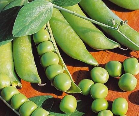 Свежий зеленый горошек