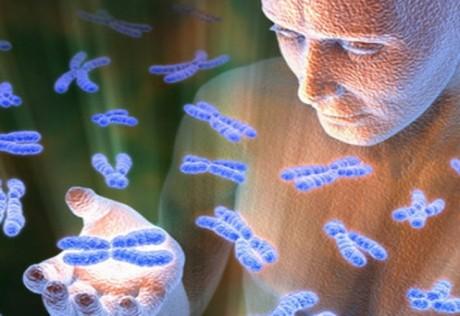 Найден ген, заживляющий раны