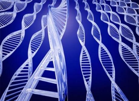 Ученые научились лечить гемофилию методом генной терапии