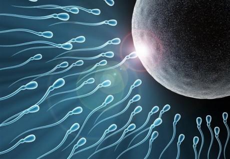 Зачатие и современная техника