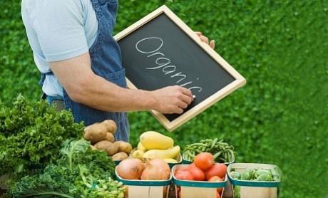 Азия и Япония станут основными потребителями органически чистых продуктов