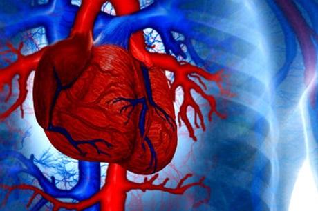 Тахикардия: не допустите остановки сердца