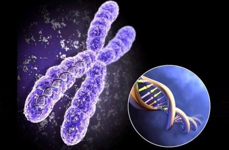 Геномика служит генетике