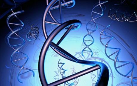 Ученые выявили женские гены молодости