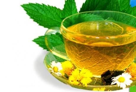 Заварите чай с мелиссой