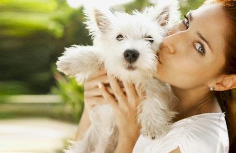 Лечебный эффект общения с собакой