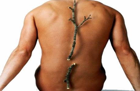 Остеопороз: современные способы диагностики