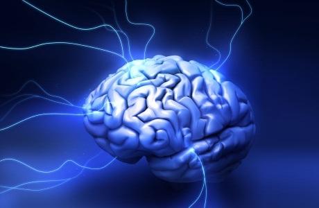 Зачем человеку мозжечковая миндалина