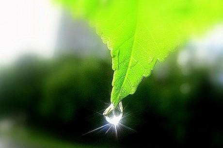 Что необходимо знать об экологии и экологической сознательности