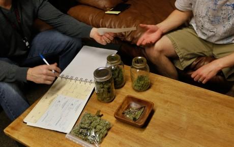 Доказано: медицинская марихуана – бесполезна