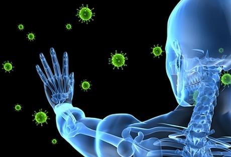 Как защитить механизмы иммунитета