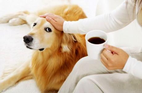 Исследование: употребление кофе может отсрочить болезнь Альцгеймера