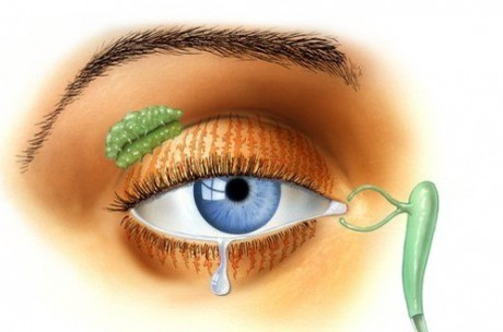 Разрабатывается тест диагностирования рака по слезам