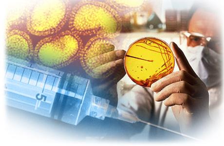 Вирус гепатита В чрезвычайно опасен для человека