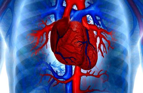 Что такое хроническая сердечная недостаточность